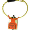 Product photo: Fokus tag orange with Os bell and Kvikk collar for sheep