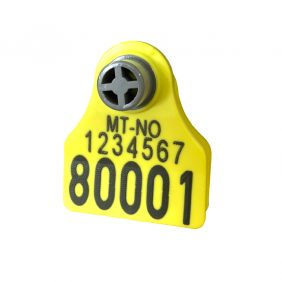 Produktfoto: Combi 3000 Mini Små Små gul gul