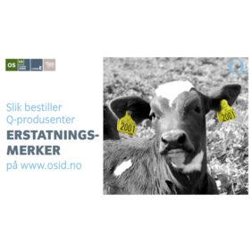 Foto: Veiledning Slik bestiller Q-produsenter erstatningsmerker for storfe