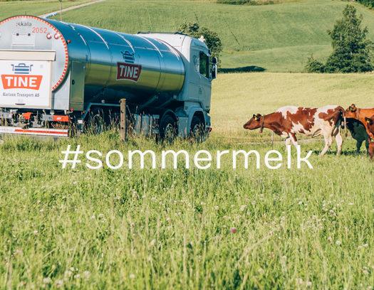 Toppfoto: Sommermelk lønner seg!